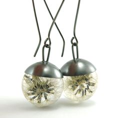 Collection: Dandelions:)        These earrings were made from clear resin and oxidized silver 930. The natural dandelions are perfectly embedded in