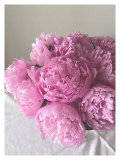 My favourite flowers