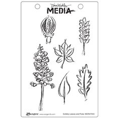 Scribbly Leaves And Pods ranger stamps - Google Search