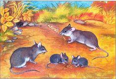 egerek