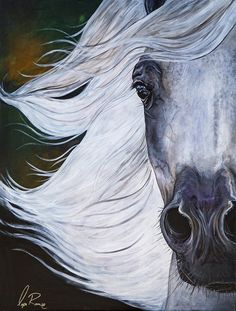 "MANE ATTRACTION  Lysa Roman Studio $ 2,000.00 Original 30"" x 40"" Acrylic of Grey Arabian Mare by artist Lysa Roman"