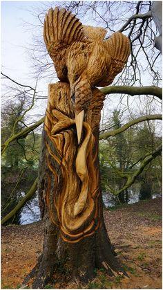 Thomas Craggs tree sculptor. Knaresborough Kingfisher. www.treesculpting.co.uk