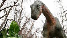 'World's largest, most lifelike' robotic dinosaur display now open at Louisville Zoo Louisville Kentucky, Dinosaur Display, Jurassic Park Film, Steven Spielberg, Tyrannosaurus Rex, Worlds Largest, Elephant, Animals, Animales