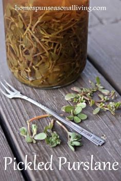 Make the most of those nutritious and flavorful garden weeds with the easy Pickled Purslane recipe for a delicious sandwich fixing, snack, and… Purslane Recipe, Real Food Recipes, Healthy Recipes, Herb Recipes, Garden Weeds, Herb Garden, Delicious Sandwiches, Edible Plants, Edible Succulents
