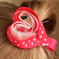 February - Valentine's Day **New gift idea for friends I know having girls... I want to find a homemade barrette/hairclip to make a 12 month of the year set. If you find any, send them my way :)