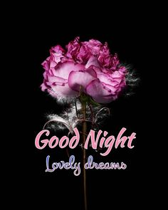 Good Night Greetings, Good Night Messages, Good Night Wishes, Good Night Moon, Good Morning Good Night, Day For Night, Night Time, Good Morning Friends Quotes, Good Night Quotes