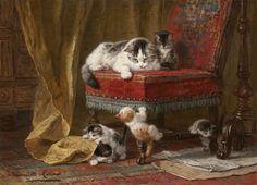 Henriette Ronner - Knip (néerlandais, 1821-1909) !