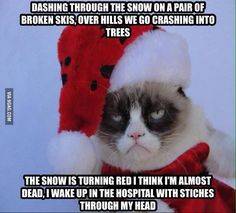 "Me: Merry Christmas, Grumpy Cat Grumpy Cat: What""s so merry about it /                                                               / ("