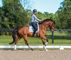 Laura Graves: How to Create a Self-Going Horse. Unlock your horse's dressage potential with this rising international star's key to success.
