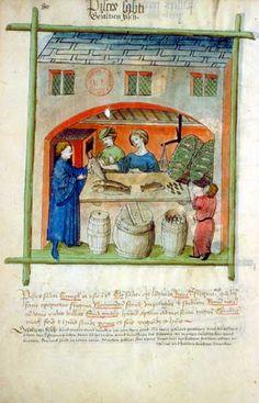 Tacuinum Sanitatis, 15th c. Paris, BnF, Département des manuscrits, Latin 9333, Fol 80v.