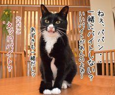 みんなで一緒にバイトしない? - http://iyaiyahajimeru.jp/cat/archives/61247