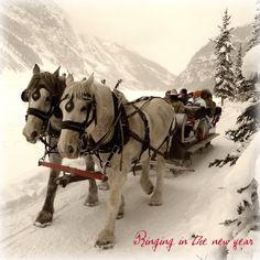 A winter sleigh ride!