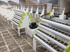 HydroPro being deployed at a rooftop farm in Hong Kong (January 15, 2014) https://www.facebook.com/media/set/?set=a.804105572940237.1073741830.116209295063205&type=1