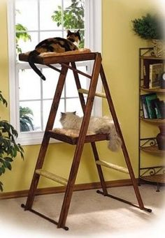 cat-tree-leap-sleep  So this is... basically a step ladder with carpet on it. Could probably make it, although still not pretty.