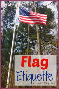 How to add an in ground flagpole landscape around it for 3 flag pole etiquette