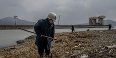 Strong Earthquake Hits Japan Islands South Of Tokyo, No Tsunami Warning