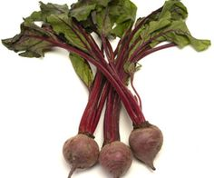 beets/blood