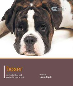 This dog expert guide gives you all the information you will need to provide your Boxer with the care and training that will enable him to lead a happy and fulfilling life. Written by experts, this co