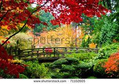 A bridge in a Japanese garden during Fall season - stock photo