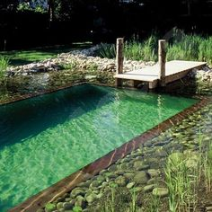 piscina-ecologica-1