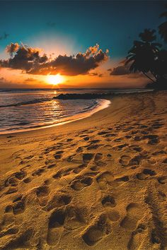 I like to cook, my husband and I collect wine, and in my head, I am consistently on island, walking the beach listening to the song of the ocean. Beautiful Sunrise, Beautiful Beaches, Beautiful Life, Beach Pictures, Nature Pictures, Foto Picture, Magic Places, Sunset Beach, Ocean Beach