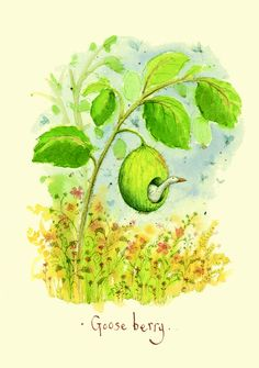 Gooseberry - A Two Bad Mice card by Fran Evans Nature Paintings, Animal Paintings, Animal Drawings, Pretty Pictures, Art Pictures, Anita Jeram, Evans Art, Sweet Drawings, Colorful Animals