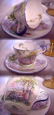 Vintage Aynsley England Pastel Landscape Floral Cup And Saucer Blue Trim