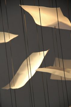 Leaves by Cordula Kafka   General lighting