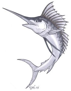 skeleton drawing of a blue marlin fish google search collection pinterest blue marlin. Black Bedroom Furniture Sets. Home Design Ideas