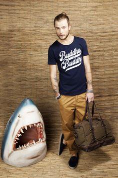Buddha to Buddha loves sharks
