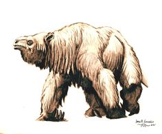 megatherium by Gonzalezaurus on DeviantArt