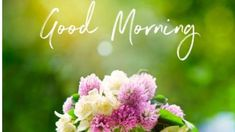 Good Morning Images – Today I am Share With You Latest Free New Good Morning Images , HD Good Morning Photo Pictures , Top Good Morning Images Best Good Morning Images For Whatsaap & Facebook . Latest Good Morning Images, Good Morning Images Download, Good Morning Photos, Good Morning Gif, Good Morning Texts, Morning Pictures, Good Morning Wishes, Good Morning Messages, Good Morning Prayer Quotes