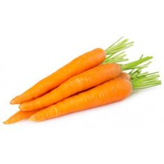 Carrot Seed Essential Oil Austria