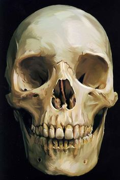 skull painting 16 best skull paintings images on pinterest skull painting ideas