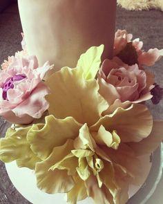 13923822_1088413681239796_3876537993838699687_o Minion, Fondant, Cream, Flowers, Plants, Cakes, Creme Caramel, Cake Makers, Kuchen
