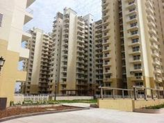 3BHK Luxury,Furnished, Unfurnished Apartment for Rent in Gurgaon ₨ 37,000, 3 BR, 160 m²