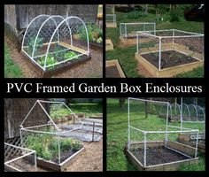 Allan Douglas writes for GRIT about his testing and building of raised garden enclosures made from PVC.