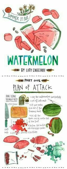 Watermelon - plan of attack - illustrated recipe - watercolor