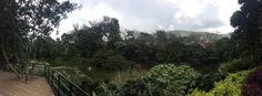 Jardín botánico -Medellín Colombia 🇨🇴
