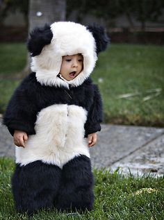 My poor children will be dressed like animals more than in normal clothing.