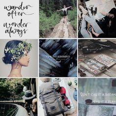 aesthetics: ilvermorny houses -                    thunderbird