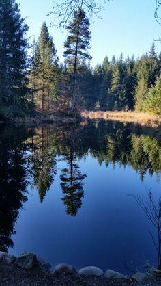 Seal Bay Park, Comox, Comox Valley, BC Vancouver Island, Canada