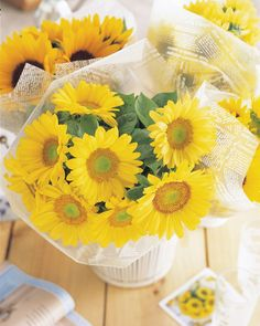 Bring a bit of sunshine inside with sunflowers! To create your own design, remember it is best to cut the flower stems in the early morning before the heat of the day. Remove the leaves below the water line and place stems in freshwater. Sunflowers are heavy drinkers so check the water level regularly. Also, change the water often because the sunflower stems are dirty and the water can turn cloudy and full of bacteria. Enjoy! Big Plants, Tall Plants, Garden Plants, Garden Seeds, Growing Sunflowers, Planting Sunflowers, Giant Sunflower, Sunflower Seeds, Annual Flowers