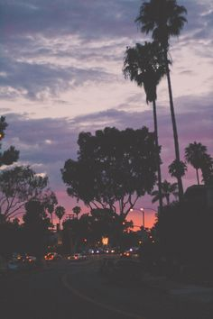 sunset and palm trees Night Sky Wallpaper, Tree Wallpaper, Wallpaper Backgrounds, Aesthetic Backgrounds, Aesthetic Iphone Wallpaper, Aesthetic Wallpapers, Night Street, California Palm Trees, California Sunset