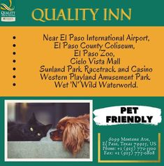 Fort Bliss, Business Centre, Hotels Near, International Airport, Amusement Park, Free Wifi, Outdoor Pool, Printing Services, Book