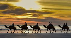 Broome my home town and gateway to the stunning Kimberley. Join Frontier Photography Tours on a Kimberley photo adventure tour frontierphotographytours,com