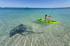 _EBT9078 Western Australia, Tourism, Surfing, Coast, River, World, Photography, Outdoor, Turismo