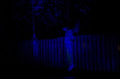 Sentenced to be hung by the neck until undead! Something wicKED this way comes....: The Wicked Woods Cemetery Halloween 2014