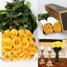 Yellow Long Stem Roses in Bulk - $107 Free Shipping