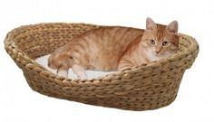 Corbeille pour chat en jacinthe d'eau avec coussin blanc_0
